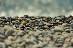 Облицовывает камешки на пляже Стоковое Изображение RF