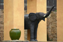 Облицуйте слона Стоковые Изображения