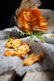 Обломоки сладкого картофеля стоковые изображения rf