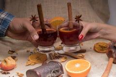 Обдумыванная здравица вина стоковые фото