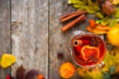 Обдумыванное вино в кружках, специи и сухих цветках и листьях St осени стоковые изображения rf