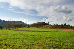 Облыселая гора Стоковая Фотография