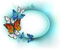 Овальное знамя с бабочками лета Стоковые Фото