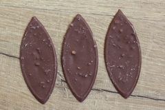 Овальный молочный шоколад с гайками на деревянной предпосылке стоковая фотография rf