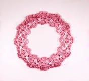 Овальная розовая рамка фото с жемчугами Стоковая Фотография RF