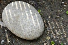 Овальный камень на земле стоковая фотография