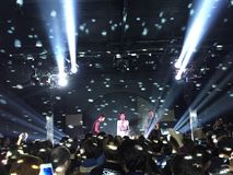 Овечка в концерте Стоковое Фото