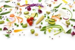 Овощи ассортимента свежие стоковые фото