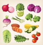 овощи вектора цветастой иллюстрации установленные