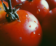 Овощи вкусная еда Стоковое Фото