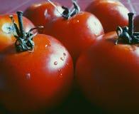 Овощи вкусная еда Стоковые Фото
