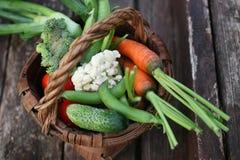 Овощи в сборе корзины Стоковое фото RF