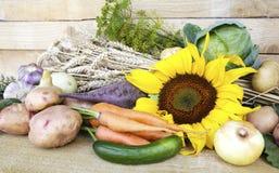 Овощи лета Стоковое Изображение