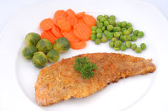 овощи жаркого мяса Стоковая Фотография