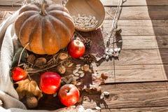 Овощи и гайки осени стоковое фото rf