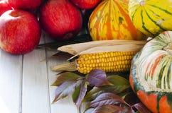 Овощи и плодоовощи осени Стоковое Изображение
