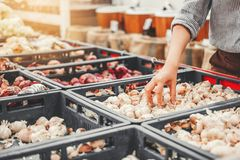 Овощи и плоды еды азиатских женщин ходя по магазинам здоровые в супермаркете стоковые изображения