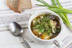 Овощи и суп гриба с травами в tureens глины на таблице Стоковая Фотография RF