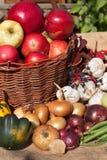 Овощи и яблоки в корзине День осени в домашнем саде еда диетпитания здоровая день солнечный стоковые изображения rf