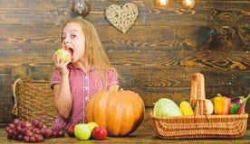 Овощи корзины полностью свежие жмут собирать традиции сбора Концепция фестиваля сбора Представлять девушки ребенка стоковая фотография rf