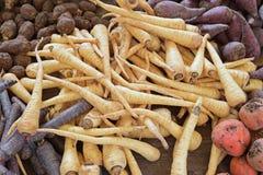 Овощи корня показанные совместно на деревянном столе Стоковая Фотография