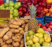 овощи лета плодоовощ Стоковые Фото