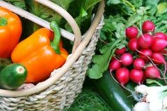 овощи лета Стоковые Фото