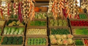 Овощи мозоли Chili лука сток-видео
