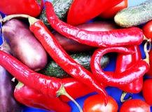 Овощи на голубой предпосылке Стоковая Фотография RF