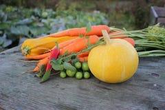 Овощи на деревенской таблице стоковое изображение