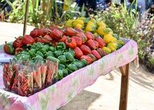 Овощи на деревянном Стоковая Фотография RF