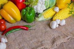 Овощи, овощи на таблице мозоль, цветная капуста, томаты, champignons, перцы chili Стоковые Фотографии RF