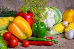 Овощи, овощи на таблице мозоль, цветная капуста, томаты, champignons, перцы chili Стоковая Фотография RF
