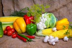 Овощи, овощи на таблице мозоль, цветная капуста, томаты, champignons, перцы chili Стоковые Фото