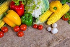 Овощи, овощи на таблице мозоль, цветная капуста, томаты, champignons, перцы chili Стоковое Изображение