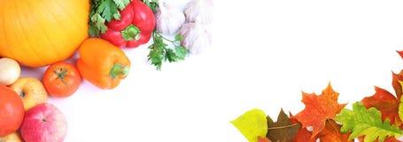 овощи осени свежие стоковые изображения rf