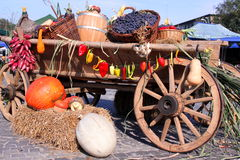 Овощи осени Стоковое Фото