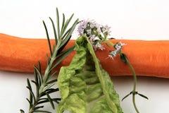овощи предпосылки белые Стоковое Фото