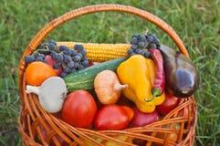 Овощи предпосылки натуральных продуктов Стоковые Изображения RF