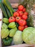 овощи продуктов свежего рынка земледелия Стоковые Фото