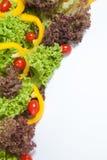 овощи продуктов свежего рынка земледелия Стоковые Изображения RF