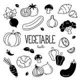 Овощи руки рисуя Овощи Doodle стоковые фотографии rf