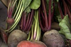 овощи рынка Стоковая Фотография RF