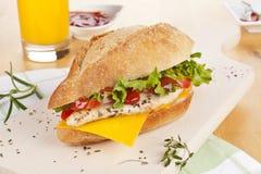 овощи сандвича цыпленка сыра свежие Стоковая Фотография RF