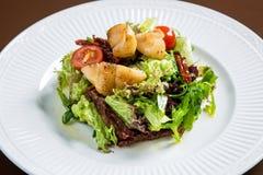Овощи салата Scallop vith Стоковое Фото