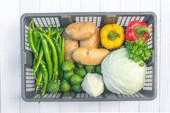 Овощи Свежий био овощ в корзине Над предпосылкой природы Стоковое Изображение RF
