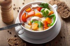 овощи супа цыпленка Стоковое Изображение RF