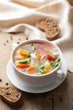 овощи супа цыпленка Стоковая Фотография