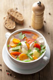 овощи супа цыпленка Стоковые Изображения RF
