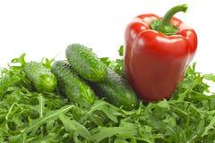 Овощи с салатом Стоковые Фотографии RF